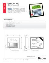 Large display QTERM-P40 character terminal data sheet - 1