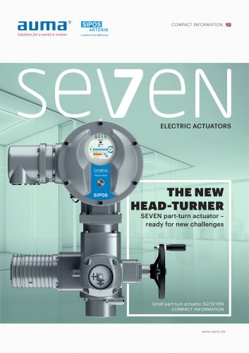 THE NEW HEAD-TURNER