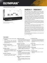 XQE20-XQE250 Rental Generator