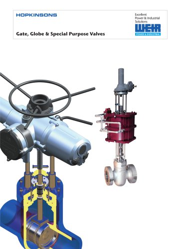 Gate , Globe & Special Purpose Valves