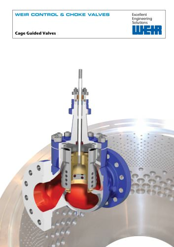 Product Brochure: Process Control Cage Guided Valves