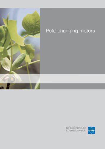 Pole-changing motors