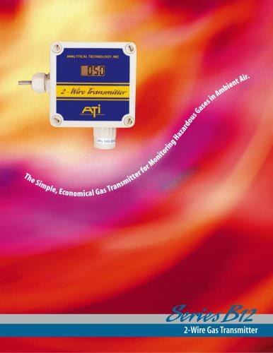 B12 2-Wire Modular Gas Detector