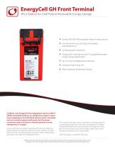 VRLA Battery for Grid/Hybrid Renewable Energy Storage