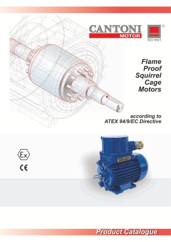 Flame-Proof Squirrel Cage Motors For Chemical Industry