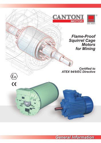 Flame-Proof Squirrel Cage Motors for Mining
