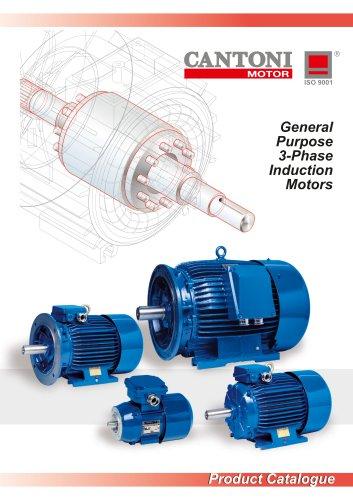 General Purpose 3-Phase Induction Motors