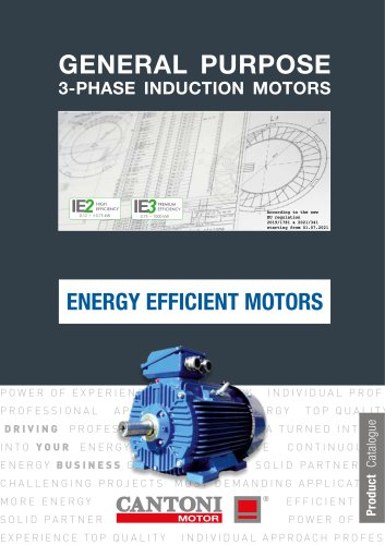 General Purpose IE3 3-Phase Induction Motors