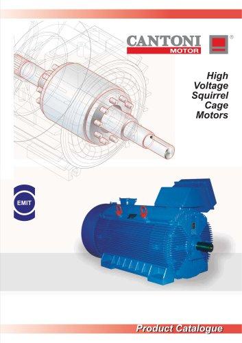 High Voltage Squirrel Cage Motors