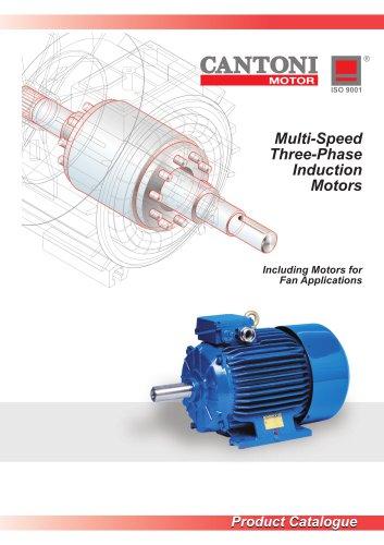 Multi-Speed Three-Phase Induction Motors