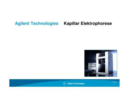 Capillary Electrophoresis Principle