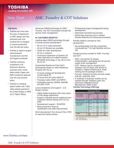 ASIC, Foundry & COT Solutions