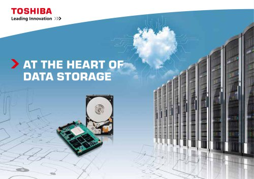 AT THE HEART OF  DATA STORAGE