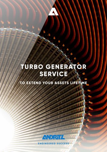 TURBO GENERATOR SERVICE