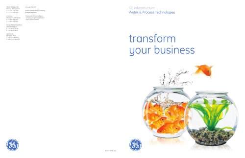 GE Water & Process Technologies Corporate Capabilities