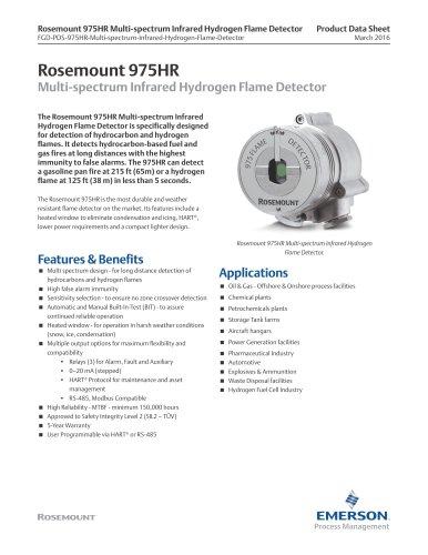 Rosemount 975HR