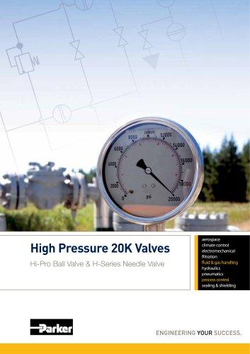 High Pressure 20K Valves