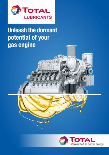 GAS ENGINES INDUSTRY