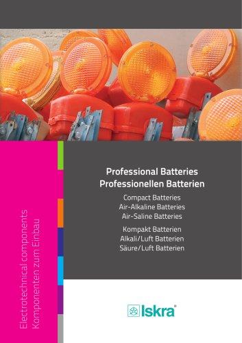 Professional Batteries