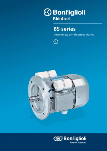 BS Single-phase asynchronous motors