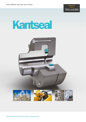 Kantseal