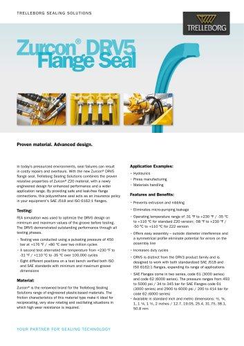 Zurcon® DRV5 Flange Seal