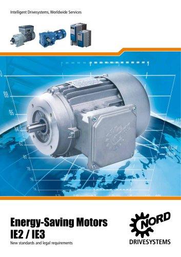 IE2 motors