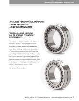 Spherical Roller Bearings - 7