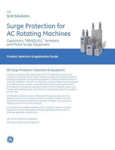 Surge Protection for AC Rotating Machines