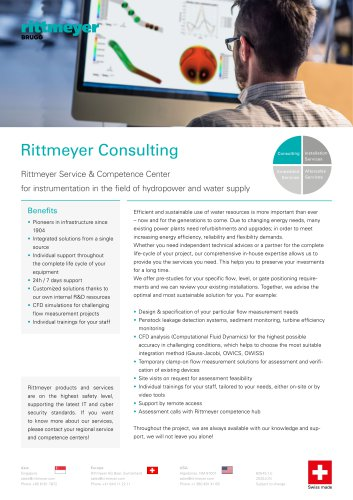 Rittmeyer Consulting