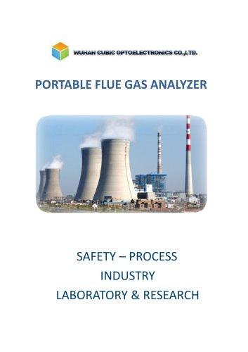 Analyzer Gasboard 3800P