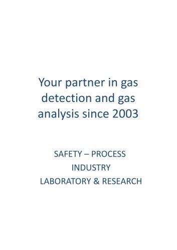 Portable GAS3100P Syngas Analyser