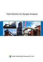 Total Solution for Syngas Analyzer
