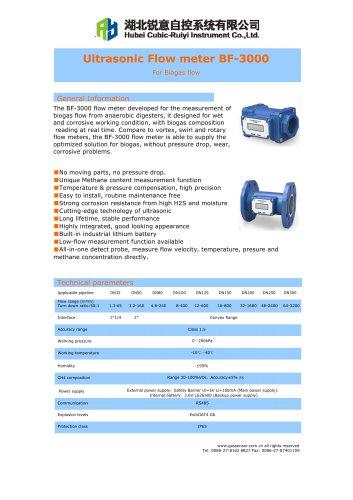 Ultrasonic flow meter BF-3000