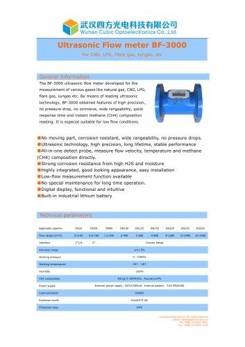 Ultrasonic gas flow meter BF-3000
