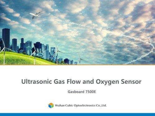 Ultrasonic Gas Flow and Oxygen Sensor Gasboard-7500E