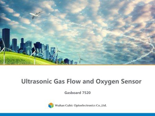 Ultrasonic Gas Flow and Oxygen Sensor Gasboard 7520