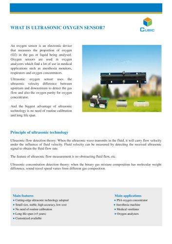 What is Ultrasonic Oxygen Sensor