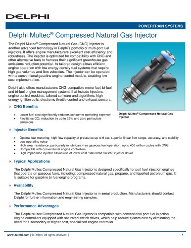 Delphi Multec Compressed Natural Gas Injector