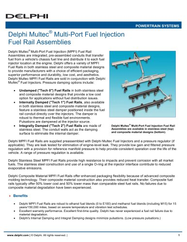 Delphi Multec Multi-Port Fuel Injection Fuel Rail Assemblies