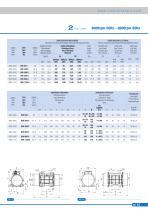 BMI Series Intemittent Service - 2