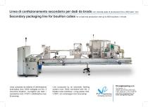 Secondary packaging line for bouillon cubes - 1