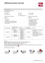 WPM Series Modular LED Light - 3