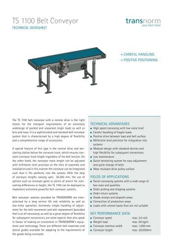 Belt Conveyor TS 1100