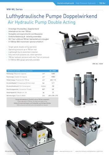 Air Hydraulic Pump Double Acting