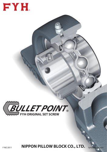 Bullet Point Flyer