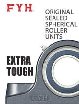 Extra Tough Flyer