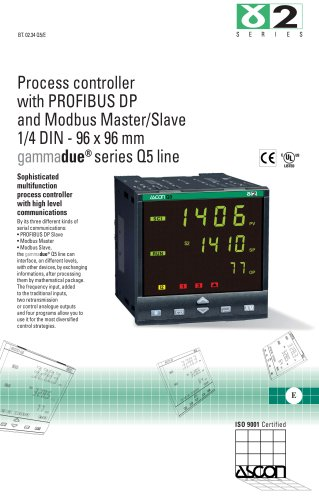 Process controller with PROFIBUS DP