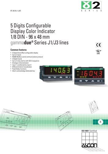 Temperature and Process Indicator