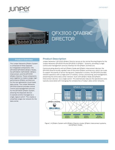 QFX3100 QFabric Director
